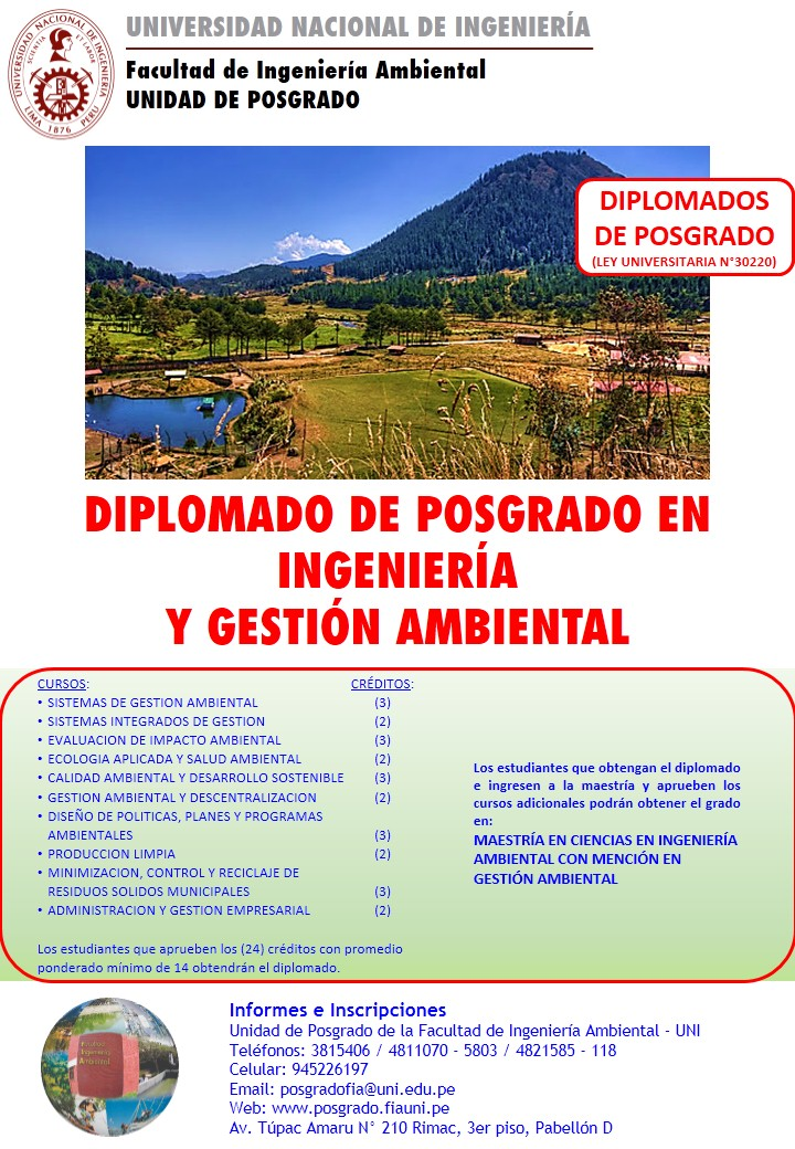 DIPLOMADOS GESTION FLAYER 2020