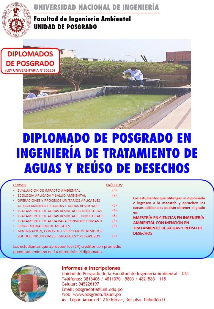 DIPLOMADOS TRATAMIENTO FLAYER 2020